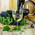 Proprietà benefiche del vino